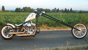 """Alcoholica"" – Harley Davidson XLH Sportster 1100"